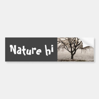 cold and lovely bumper sticker