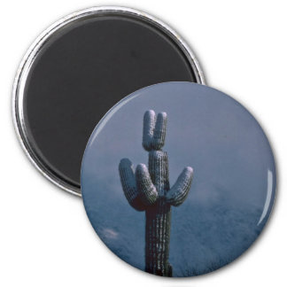 Cold Cacti Magnet