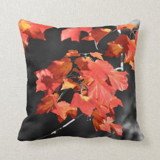 Cold Fall Pillow