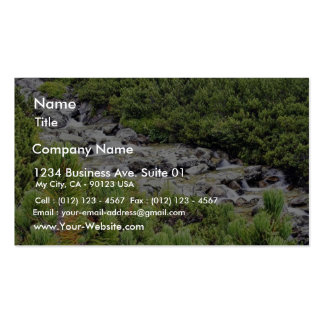 Cold Stream In High Tatras In Slovakia Pack Of Standard Business Cards