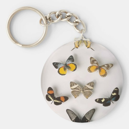 Colection-of-butterflies, keychain