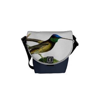 Colibrí botánico azul verde negro vintage bolsas de mensajeria