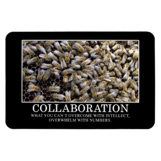 Collaboration Improves Your Chance of Success Rectangular Photo Magnet