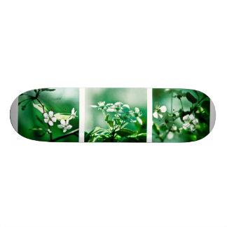 Collage White Cherry Blossoms Skate Board