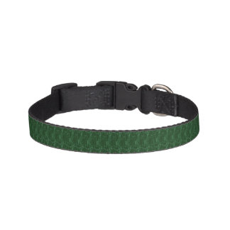 Collar of dog - green fantasy