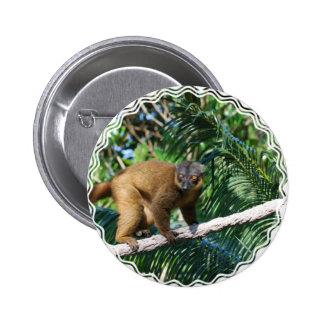Collared Lemur Button