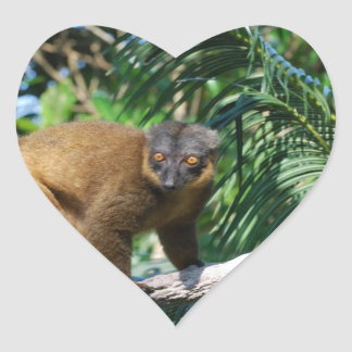 Collared Lemur Stickers