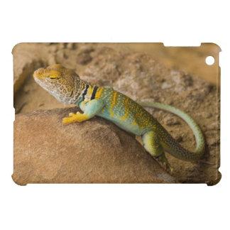 Collared Lizard iPad Mini Cover