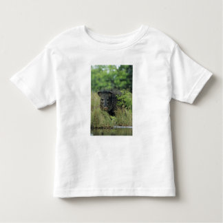 Collared Peccary, Javelina, Tayassu tajacu, Toddler T-Shirt