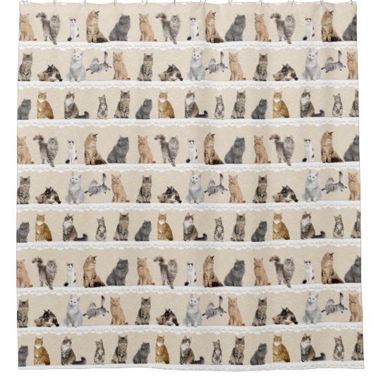 Collectable Cats Shower Curtain