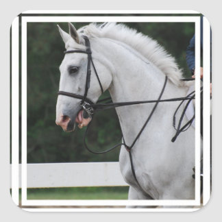 Collected White Horse  Stickers