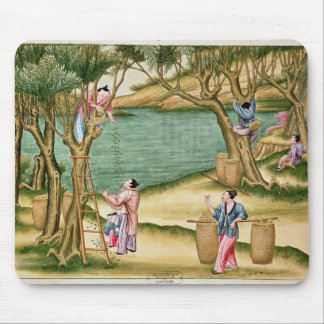 Collecting mulberries mouse pad