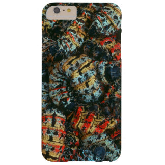Collection Of Mopane Worms (Imbrassia Belina) Barely There iPhone 6 Plus Case