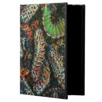Collection Of Mopane Worms (Imbrassia Belina) Case For iPad Air