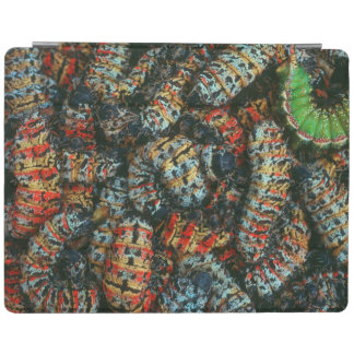 Collection Of Mopane Worms (Imbrassia Belina) iPad Cover