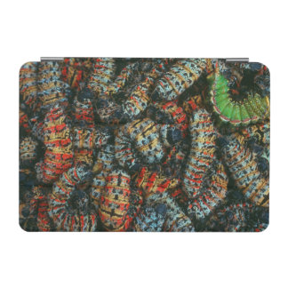 Collection Of Mopane Worms (Imbrassia Belina) iPad Mini Cover