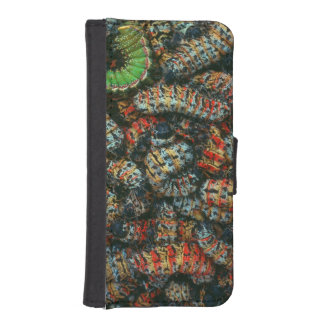 Collection Of Mopane Worms (Imbrassia Belina) iPhone SE/5/5s Wallet Case