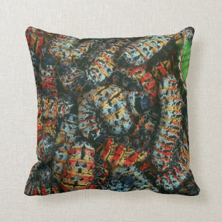 Collection Of Mopane Worms (Imbrassia Belina) Throw Pillow