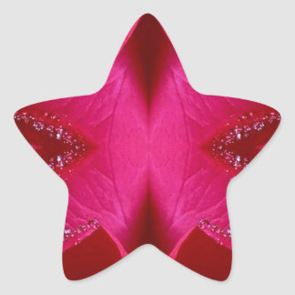 Collectors Edition - Sparkle Red n Pink Rose Star Stickers
