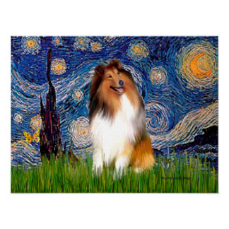 Collie 1 - Starry Night Poster