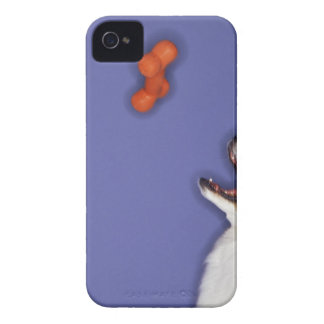 Collie catching plastic bone iPhone 4 cases