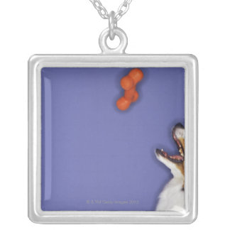 Collie catching plastic bone silver plated necklace