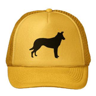 Collie Gear Cap