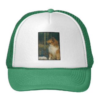 Collie Mesh Hats