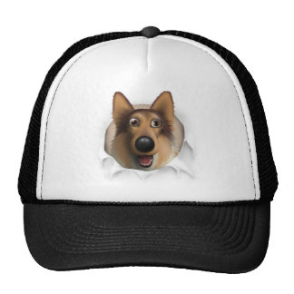 Collie (Rough Coat) Busting Out Mesh Hats