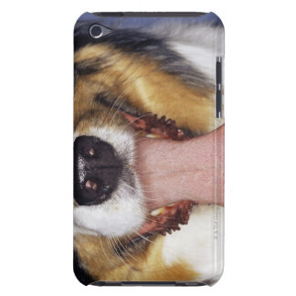 Collie wagging tongue iPod Case-Mate case