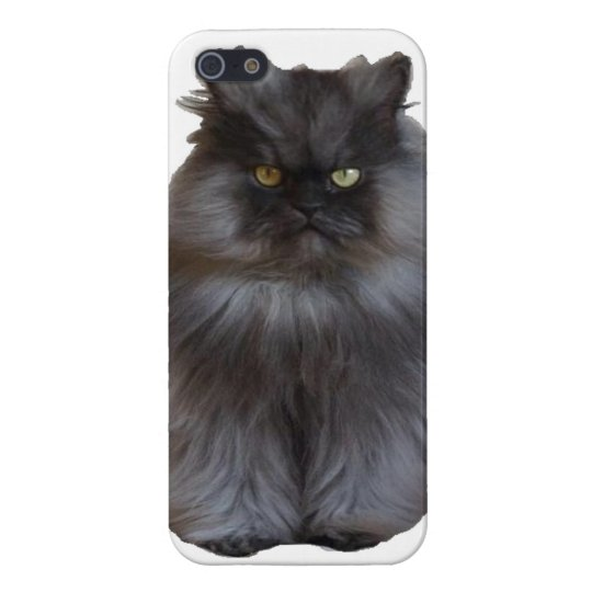 Colonel Meow Phone Case iPhone 5 Cases