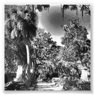 Colonial Cemetery Photographic Print