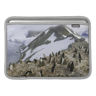 Colony of Chinstrap penguins MacBook Sleeve
