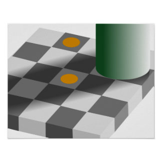 Color and Brightness Constancy Optical Illusion Print