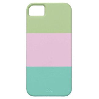 Color Block iPhone 5 Case iPhone 5 Case