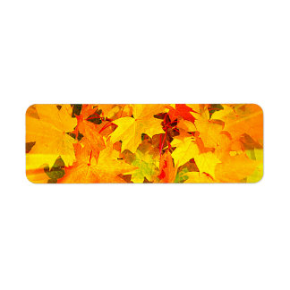 Color Burst of Fall Leaves Autumn Colors Return Address Label