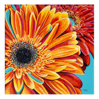 Color Bursts II Acrylic Print