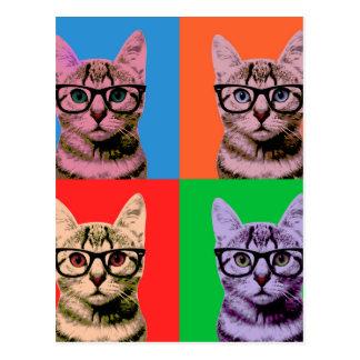 Color Cat Postcard