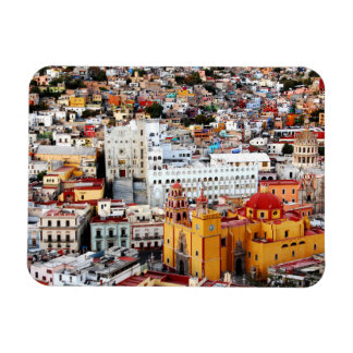 Color Collection Rectangular Photo Magnet