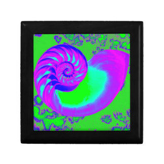 Color growth, nautilus shell gift box
