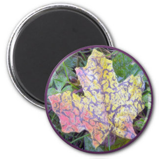 Color Me Fall Magnet