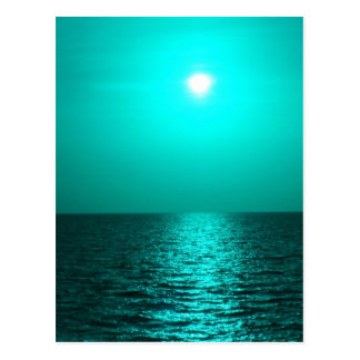 Color Me Sea Post Card