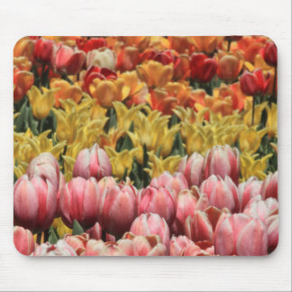 Color Of Tulips Mousepad