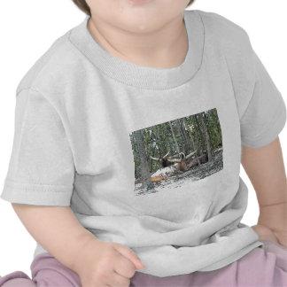 Color Pencil Longhorns T Shirts