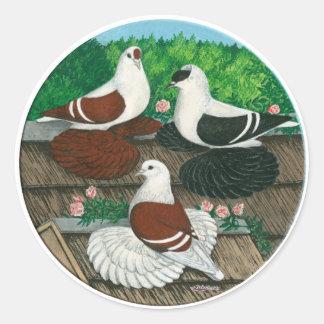 Color Pigeon Trio Round Sticker