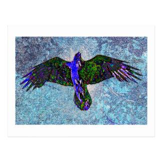 Color Raven On Blue Post Cards
