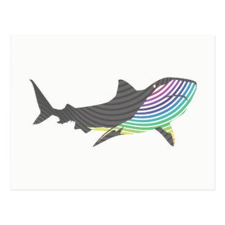 Color Shark Swirl Postcard