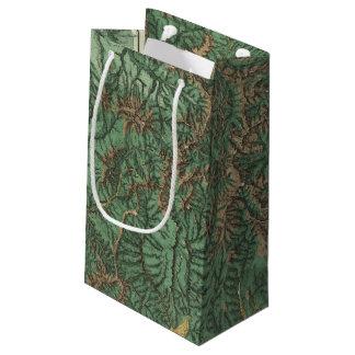 Colorado 5 2 small gift bag