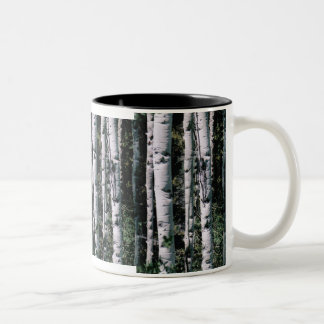 Colorado Aspen Coffee Cup