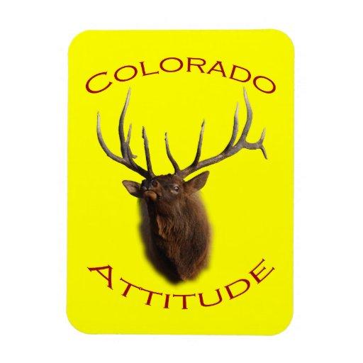 Colorado Attitude Magnet